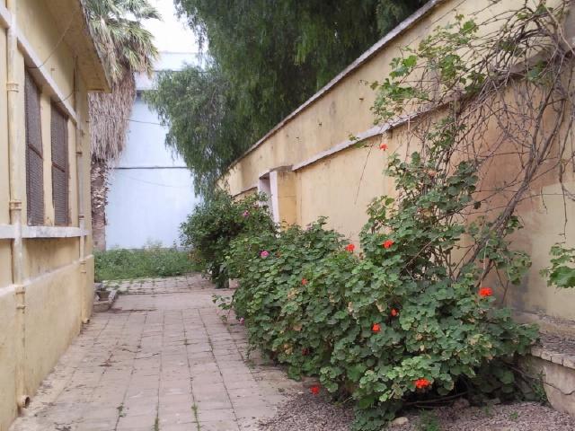 Villa vendre 1350m oran algerie petites for Achat maison algerie