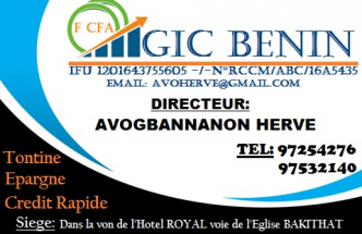 STAGES A GIC BENIN FINANCE GROUP :VOTRE MICRO FINANCE RÉGIONAL
