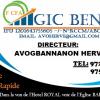 STAGES A GIC BENIN FINANCE GROUP :VOTRE MICRO FINANCE RÉGIONAL