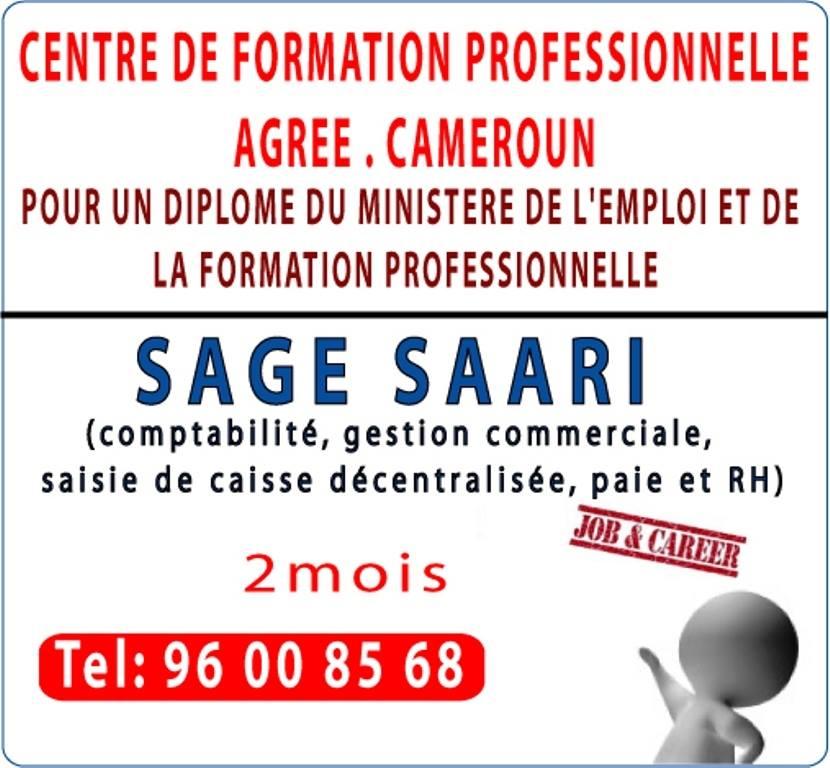 Formation pour entreprise et personne logiciel sage saari diplome du minefop cameroun - Formation de gardien d immeuble gratuite ...