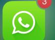 whatsapp amitié/rencontre/divertissement