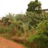 Terrain 1000m² à Abom-Baba en procédure de titre, ayant documents nécessaires