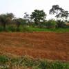 Terrain titré à vendre à Angon 2 par Mbankomo (3 km de la CAF)