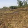 Terrain d'habitation de 1000 m² à vendre situé à la Dibamba