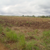 Terrain industriel de 3755 m² à vendre situé à la Dibamba