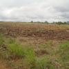Terrain industriel de 4066 m² à vendre situé à la Dibamba