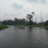 300 Hectares deTerrain Agricole à louer à Mengang-Cameroun