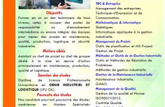 Licence Professionnelle Universitaire Génie Industriel et Logistique