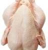 poulets congélés