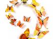 Stickers 12 Papillons 3D Jaune Autocollants Muraux
