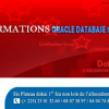 FORMATION ORACLE DATABASE 11g (CERTIFICATION INTERNATIONAL)