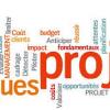 Formation en gestion de projet pour cadres par une firme canadienne