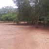 HILL TOP PLOTS AT OKPONPO, OYARIFA FOR SALE.