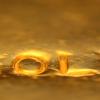 Gold Mine Concession Services