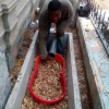 No More Manhole Use Magic Toilet Free Classifieds In Ghana