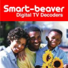 Coship free to air decoder