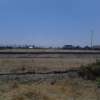Affordable, Prime and Ideal Residential Plots For Sale Kamulu 3KM Off Kangundo Road