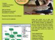 soutien scolaire et universitaire en ligne