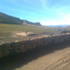 Ferme 45 ha à 10 km d' Azrou, 8 M/ha