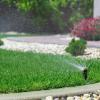 Arrosage de votre jardin