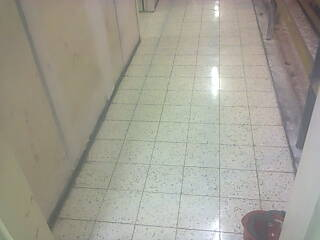 Terrazzo Installation Marble Floor Finishing Free
