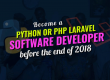 Become a Python or PHP Software Developer before the End of this Year