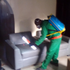 Bed bug/pest control services in Lagos