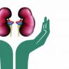 Health Relations (Kidney)
