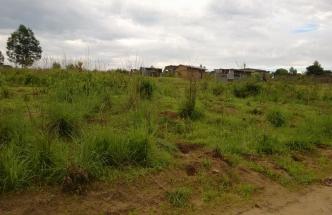 Terrain de 1250m² à vendre à Jolie Site à 11.000 $
