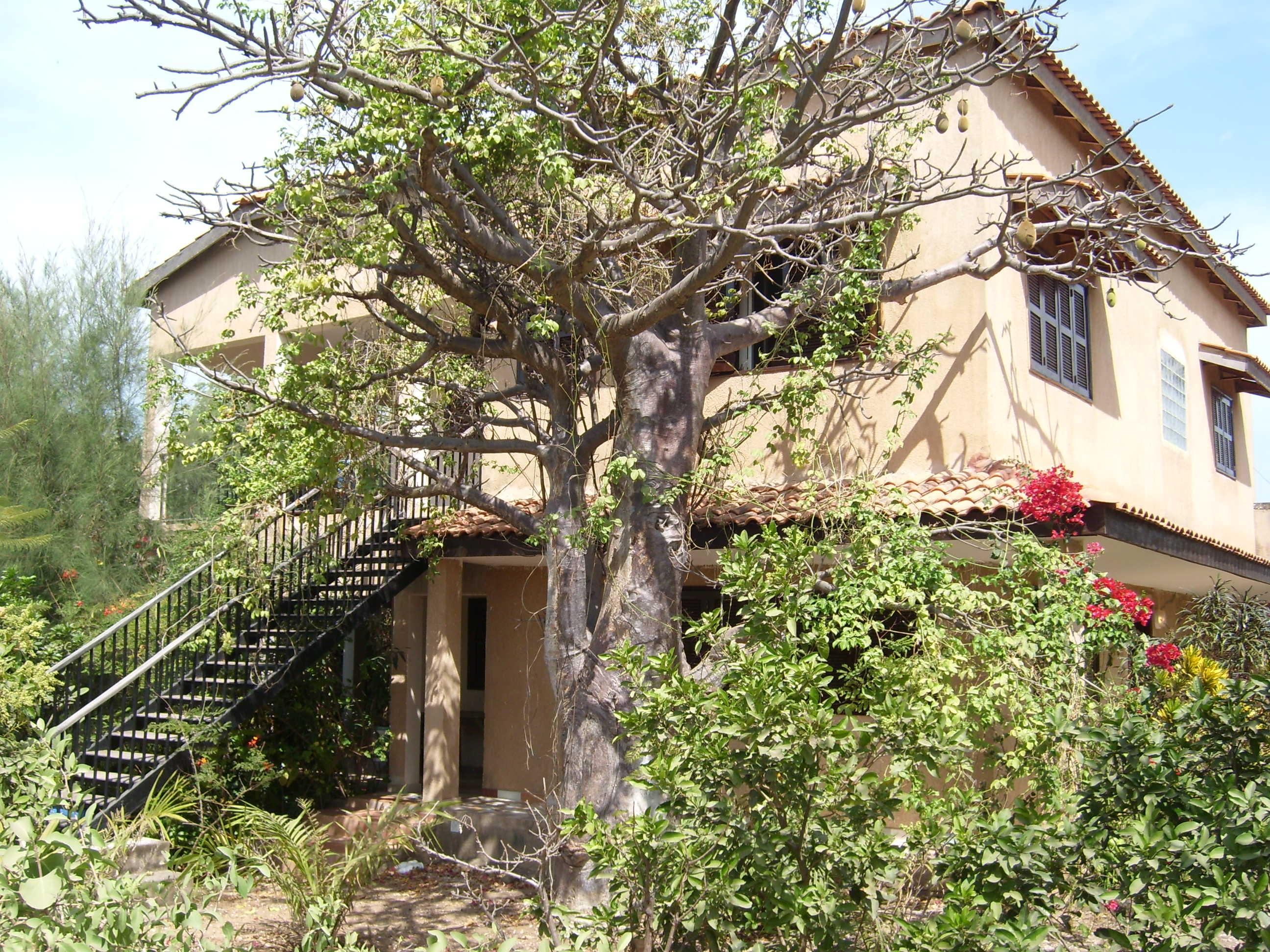 Belle villa meubl e en bord de mer kafountine casamance for Achat maison senegal