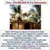 Virage Villa de 600m² R+2 A 250Million