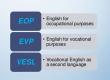 Renforcement de niveau en anglais