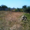 A VENDRE: TERRAIN CLOTURE A AGBODRAFO-PLAGE