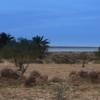 Terrain Titré