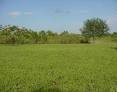 PLOT OF LAND FOR SALE IN FORT PORTAL