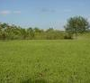 LAND FOR SALE IN FORT PORTAL Uganda