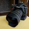 Buy New:Nikon D750-Nikon D800-Canon 5D Mark II
